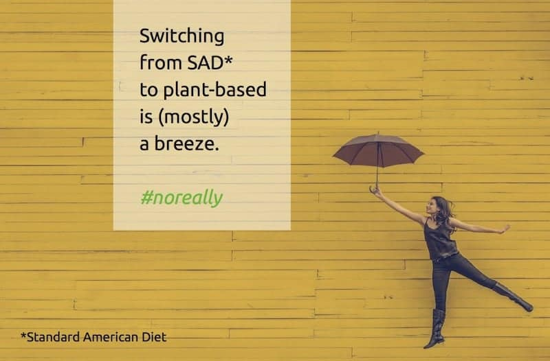 Plant-based diet - How to make the switch