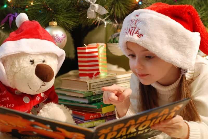Why Pets Make Terrible Holiday Gifts