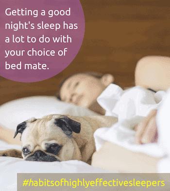 habits of highly effective sleepers
