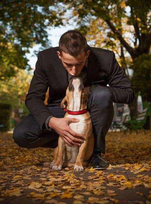 Being a Responsible Pet Owner Starts With This One Thing