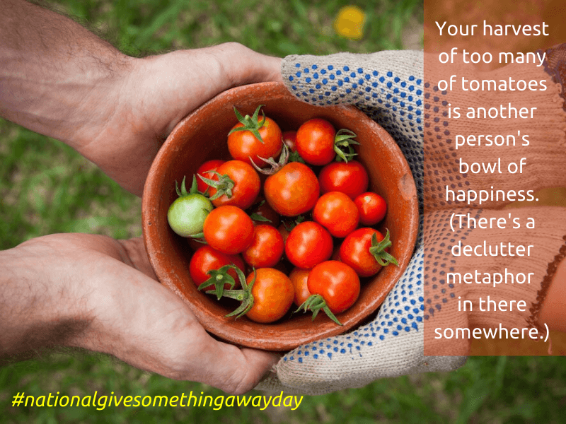 hands holding tomatoes