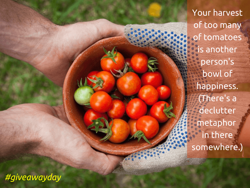 giving tomatoes on give away day